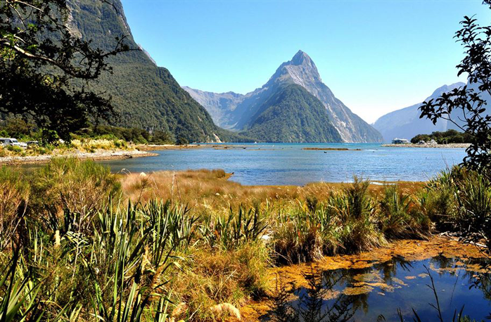 4 Night Fiordland Once in a Lifetime Experience
