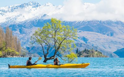 Intrepid – New Zealand South Island Family Holiday